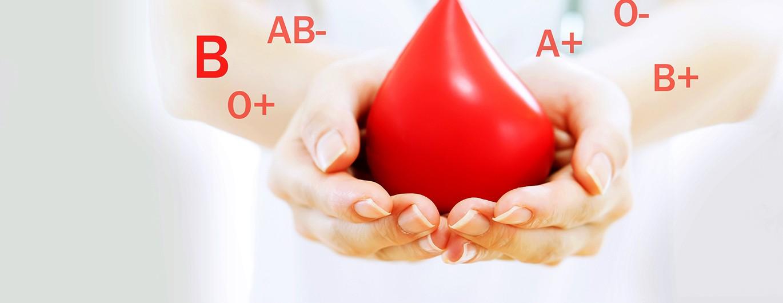 Bild zum Beitrag 'Blut ist unser kostbarer Lebenssaft'