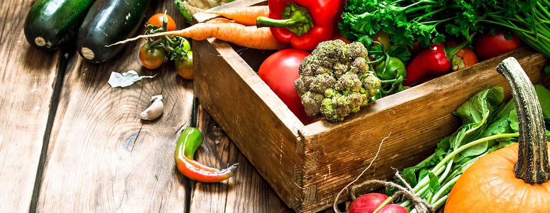 Bild zum Beitrag 'Ausgewogener Speiseplan – 10 Tipps für richtiges Essen'