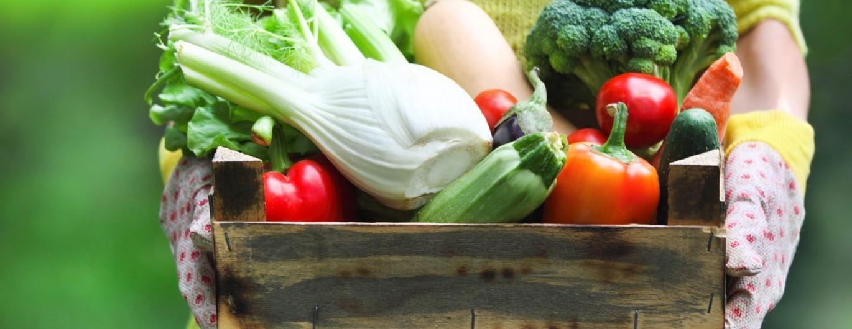 Bild zum Beitrag 'Obst und Gemüse: frisch, tiefgekühlt oder aus der Dose?'