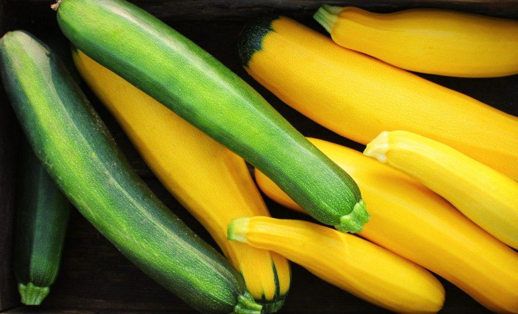 Bild zum Beitrag 'Alleskönner Zucchini'