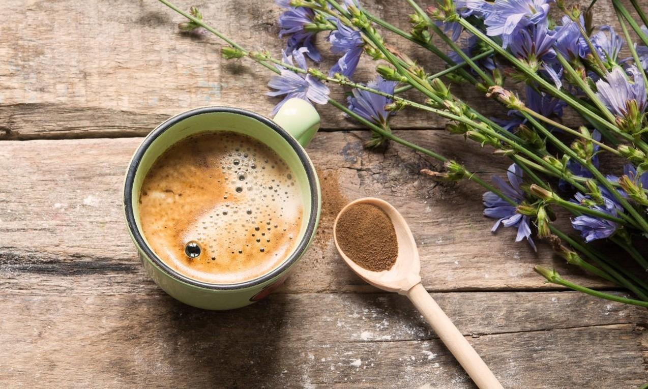 Zichorienwurzel Kaffee