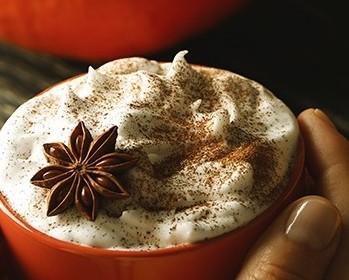 Bild zum Beitrag 'Pumpkin Pie Spice – Gute Laune-Gewürz für den Herbst'