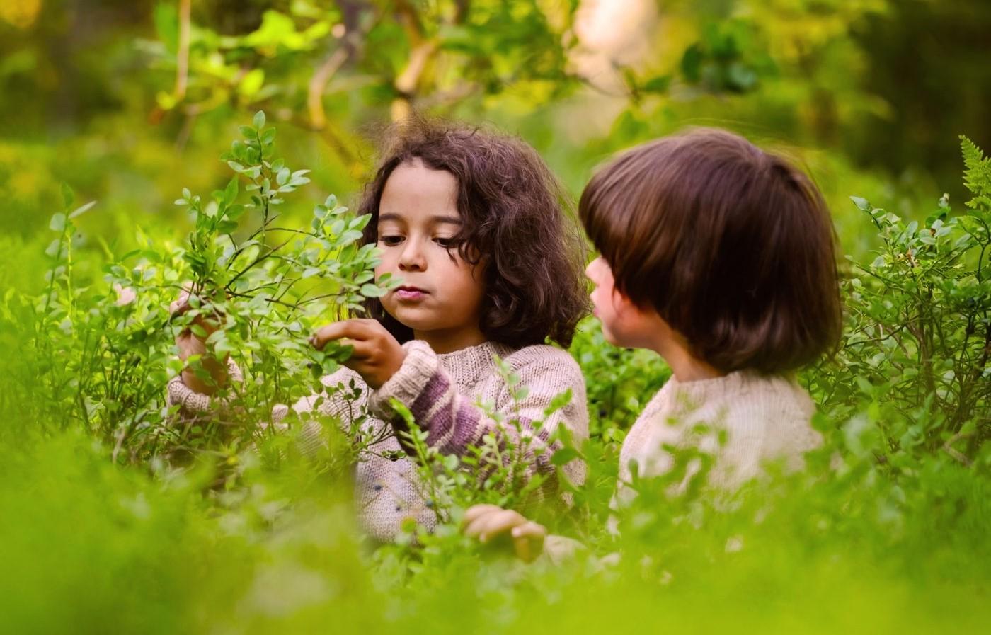 Bild zum Beitrag 'Mit Kindern den Frühling erleben'