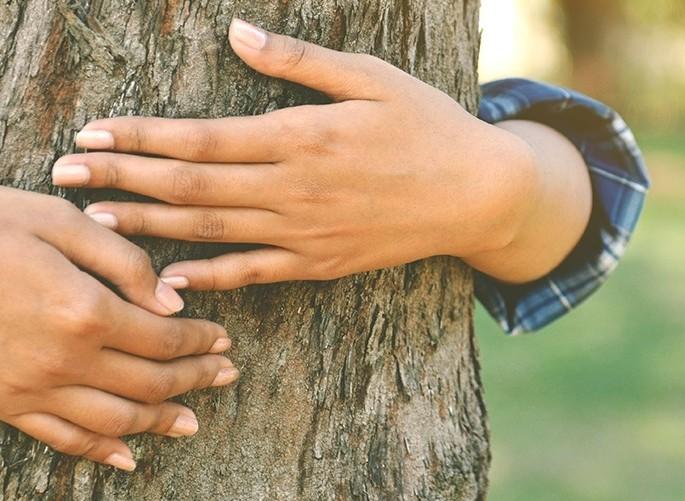 Bild zum Beitrag 'Gemeinsam für den Klimaschutz'